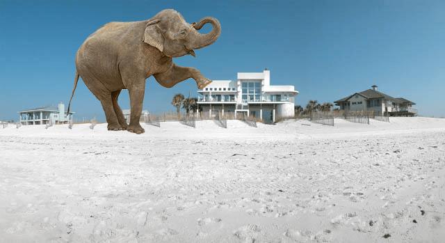 jumbo beach house
